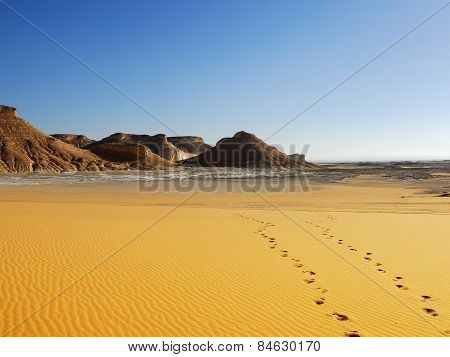 Footprints, Sahara