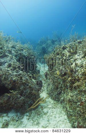 Underwater Trench