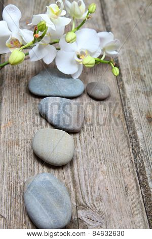 Spa Stones And Orchid