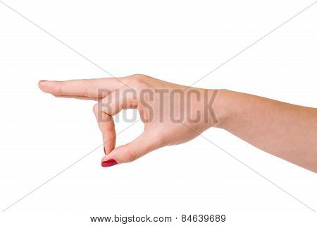 Female hands over white background