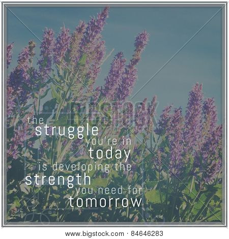 Quote - the struggle you're in today is developing the strength you need for tomorrow