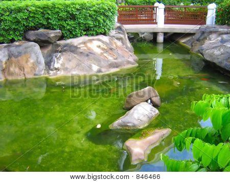 japanese garden koi fish pond