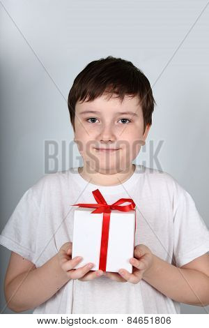 Cheerful Boy With Present