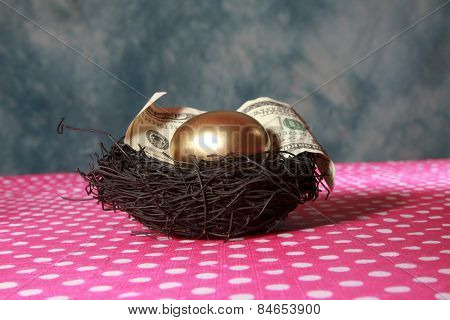 Nest Egg. A Solid 24K Golden Egg lays in a Black Bird Nest with a Genuine 100 Dollar bill. Represents Retirement savings, Saving for a Rainy Day, Savings account, 401K, Banking, Finance business
