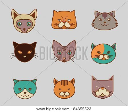 Collection of cute cat vector icons and illustrations