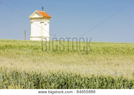 God's torture with grain, Southern Moravia, Czech Republic