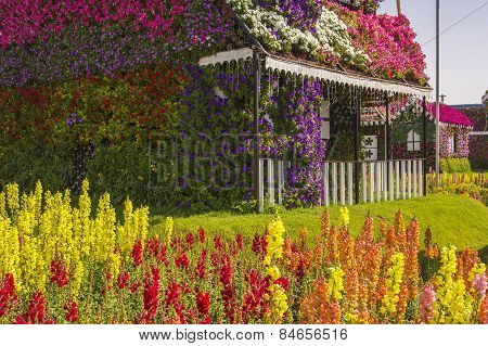 terrace house of flowers and colorful lawn