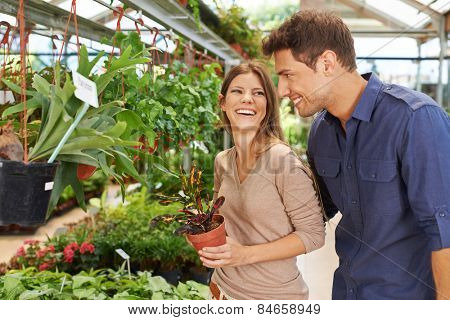Happy couple shopping for green plants in a garden center