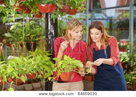 Woman getting competent advice in nursery shop from a gardener