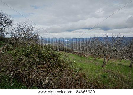 Landscape At Salvatiera De Los Barros