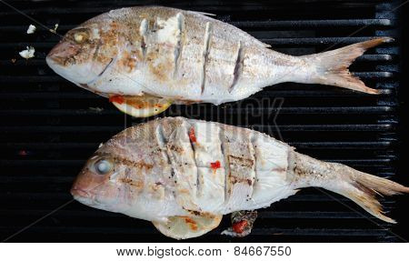 Food-cuisine-fish-grilled-bbq-grill-snapper-dish