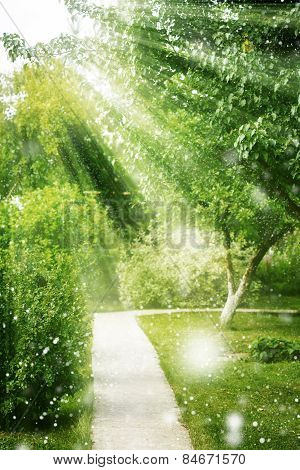 Natural Spring Background With Sun Light