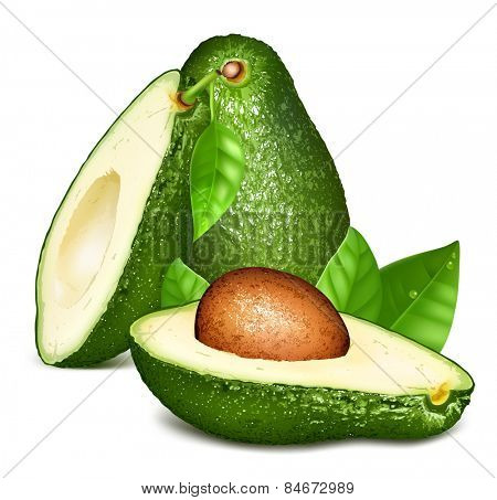 Avocados with leaves. Vector illustration