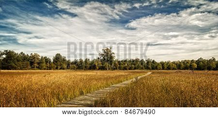Prairie Boardwalk