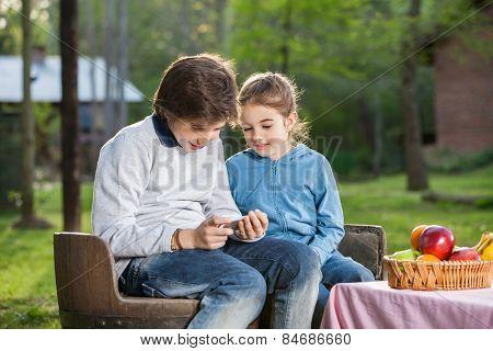 Happy siblings using smartphone at campsite