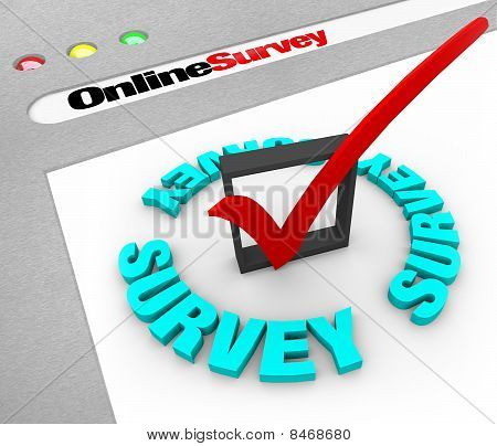 Online Survey - Web Screen
