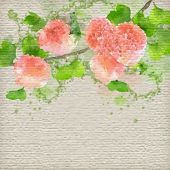 stock photo of hydrangea  - Vector Watercolor Flowers Hydrangea on textured paper background - JPG