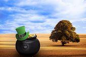 stock photo of leprechaun hat  - leprechaun hat against sunny brown landscape - JPG