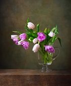 picture of jug  - Still life with colorful tulips in glass jug - JPG