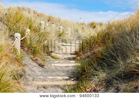 Sandy beach access path with steps