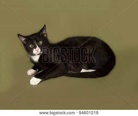 Black And White Kitten Lies On Green