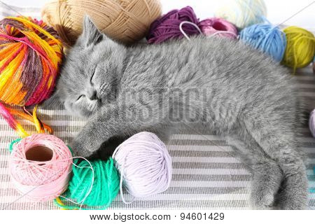 Cute gray kitten with colorful balls of thread on striped carpet, closeup