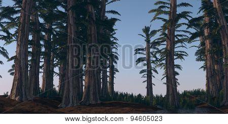 prehistoric tempskya grove