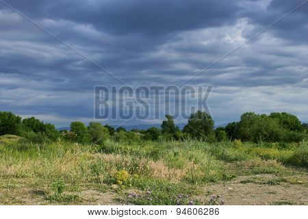 Summer landscape with storm clouds