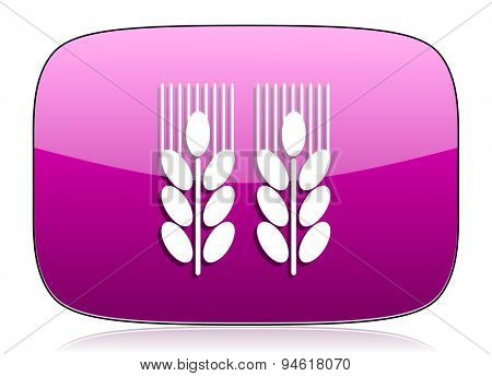 agricultural violet icon  original modern design for web and mobile app on white background with reflection