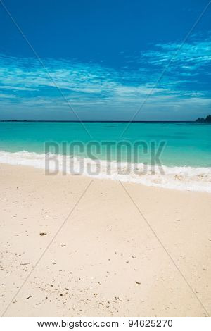Lagoon Landscape In Sunny Paradise