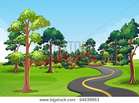 Scenery of a road with green environment on the sides