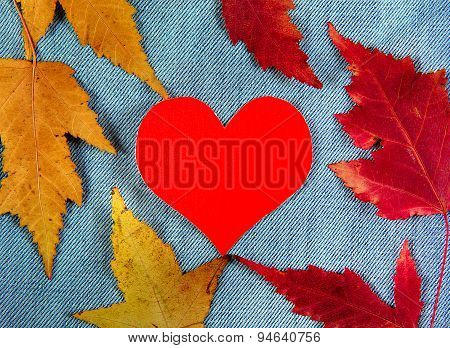 Autumnal Leaves And Heart