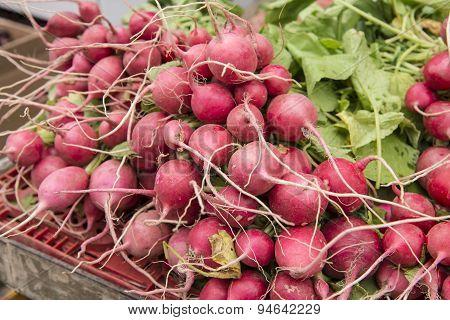 Radish on a market