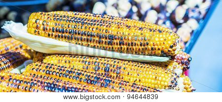 grilled corn on the cob on a street