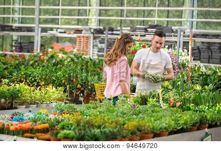 The customer and the florist watch exhibited flowers for sale in a greenhouse