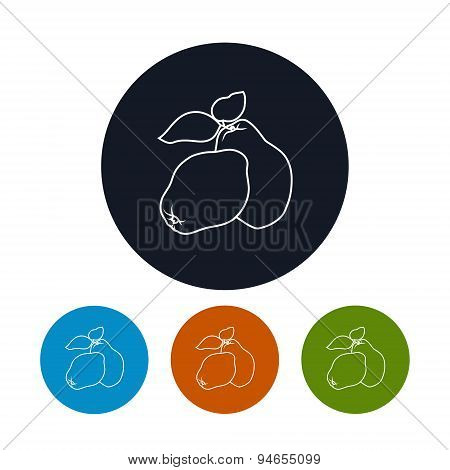Icon  Quince In The Contours