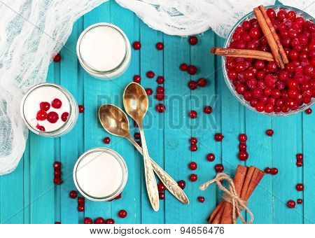 Home Made Yogurt With Frozen Red Currant Berries
