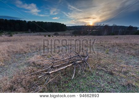 Sunset Over Withered Grassland