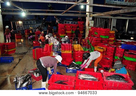 Nha Trang, Vietnam – February 21, 2013: Women Workers Are Collecting And Sorting Fisheries Into Bask