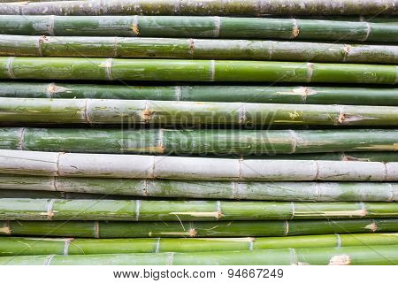 Pile Of Bamboo Stalks