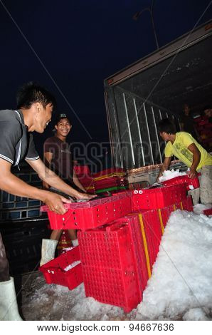 Nha Trang, Vietnam – February 21, 2013: Workers Are Grinding Ice To Preserve Tuna Fish In The Hon Ro