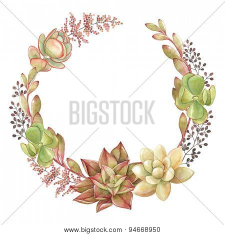 Wreath of succulents and kalanchoe, vector watercolor illustration.