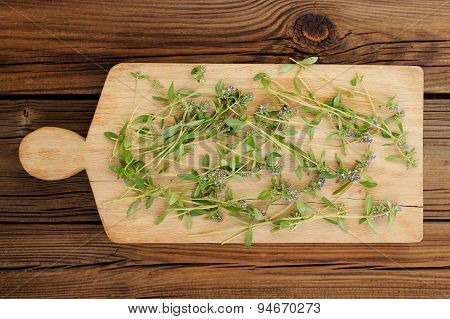 Wild Thyme Stalks On Small Wooden Board