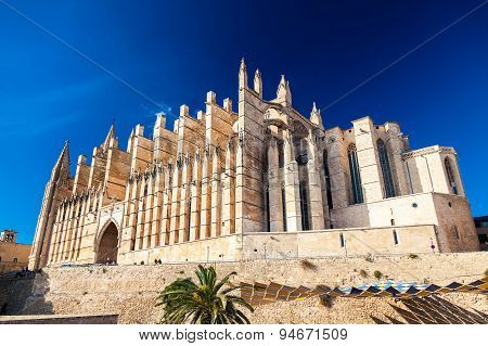 The Majestic Palma Cathedral