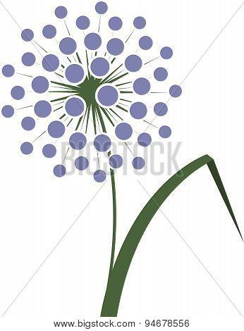 Flower Onions