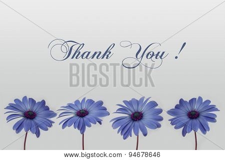thank you handwriting with flower decoration