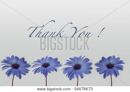thank you text with flower decoration on white