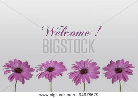 welcome text card with flowers in a row decoration