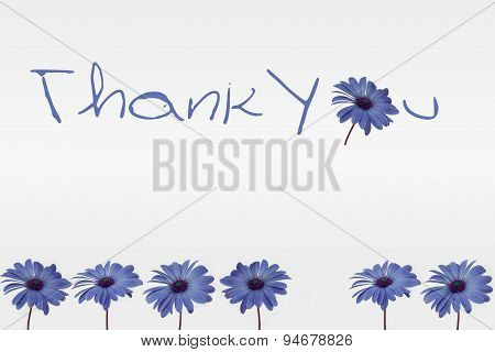 Thank you - flowers on white background