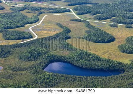 lake in forest. top view